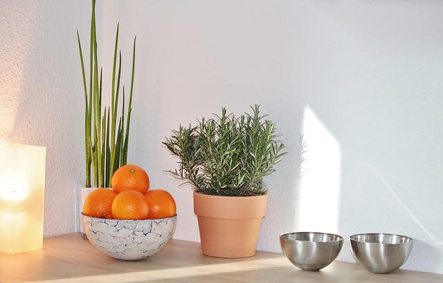Id e d co une plante artificielle dans votre maison for Plante cuisine decoration