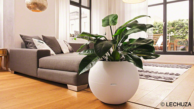 Une belle plante artificielle d corative dans votre salon for Plante artificielle balcon