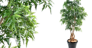 Id e d co une plante artificielle dans votre maison - Arbre artificiel interieur ...