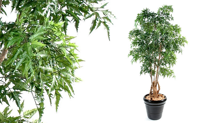Un arbre artificiel d int rieur pour une d coration durable for Plante arbuste interieur