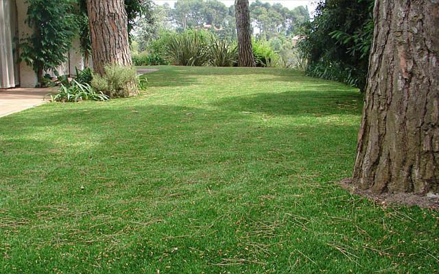 Du gazon synth tique dans mon jardin - Sous couche gazon synthetique ...